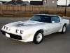 1979-1981 Pontiac Firebird Trans-Am Gallery