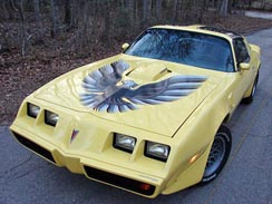 1979-1981 Firebird Trans Am Complete Decal Kits - GM Licensed