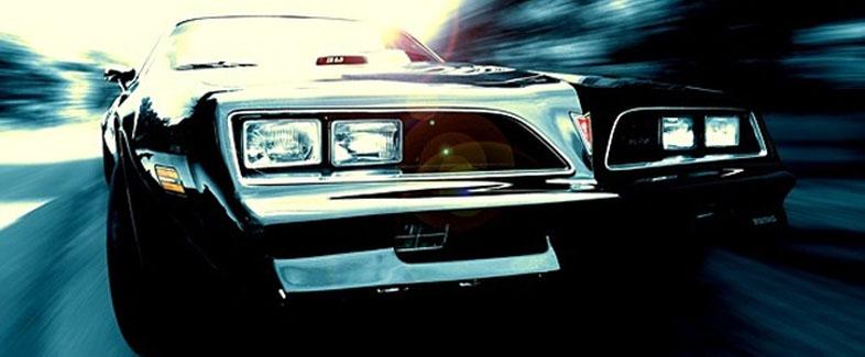 1977-1978 Pontiac Firebird Trans AM   Danko Reproductions